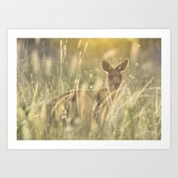 Sneaky Kangaroo In The E… Art Print