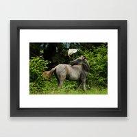 The Horse And The Bird Framed Art Print