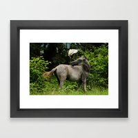 The Horse and the Bird Framed Art Print