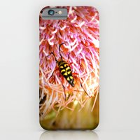 iPhone & iPod Case featuring Buggin' Out by Olive Coleman Photography