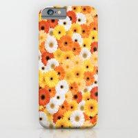 Covered in Gerberas iPhone 6 Slim Case