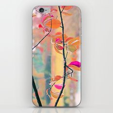 New Autumn Colours  iPhone & iPod Skin