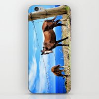 Horses against a blue sky iPhone & iPod Skin