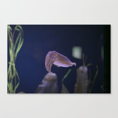In the Tank: Nope Canvas Print