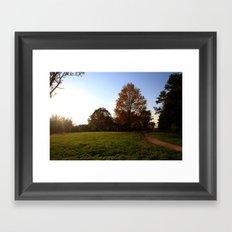 S U N S H I N E {II} Framed Art Print