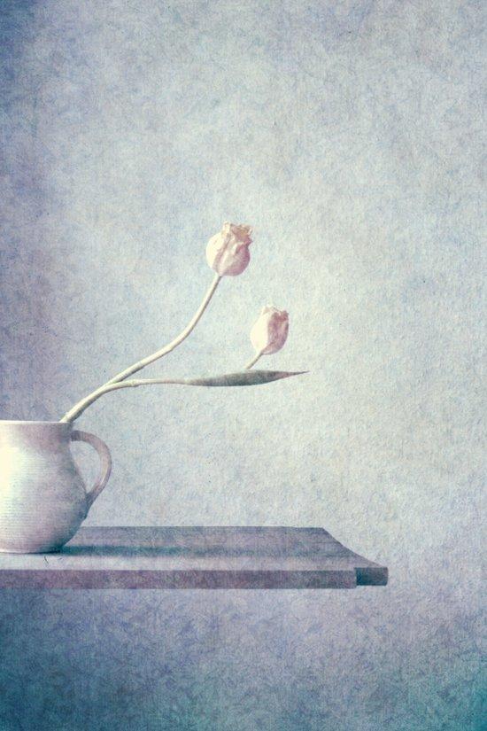 lilás II Art Print