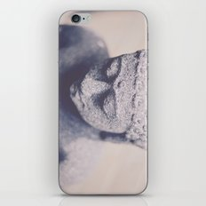 Gently iPhone & iPod Skin