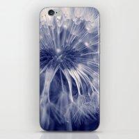 blue dandelion I iPhone & iPod Skin