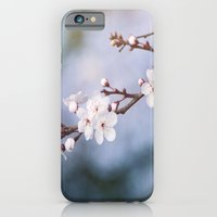 First Blossom iPhone 6 Slim Case