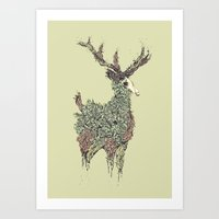 Beautiful Deer Old Art Print