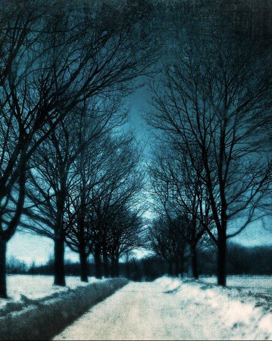 Journey into Blue Canvas Print