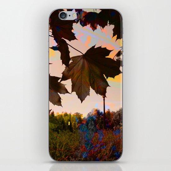 Autumn Dreams iPhone & iPod Skin