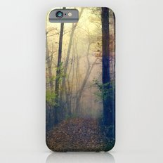Wandering in a Foggy Woodland iPhone 6s Slim Case