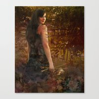 Slings and Arrows Canvas Print