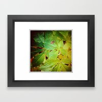 Autumnal#5 Framed Art Print