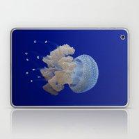 JellyFishi Laptop & iPad Skin