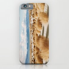 Paiute Land iPhone 6 Slim Case