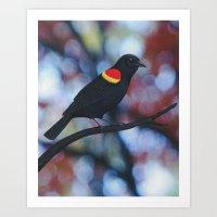 red winged blackbird male bokeh Art Print