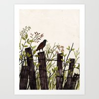 Art Of Bird Watching Art Print