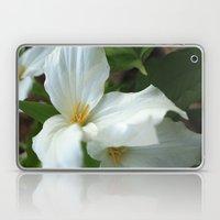 Fleeting Beauties Laptop & iPad Skin