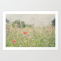 wild flowers ...  Art Print