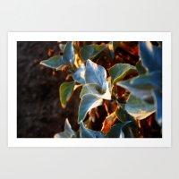 Desert Leaves II Art Print