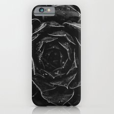 Sempervivum #1 iPhone 6 Slim Case