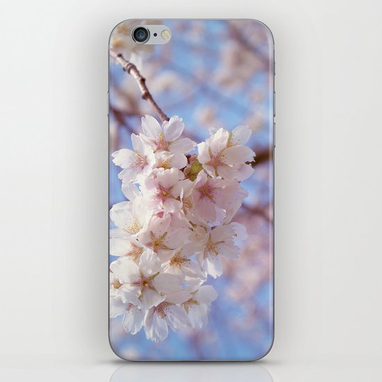 In Bloom iPhone & iPod Skin