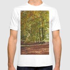 Autumnal beech trees in a natural woodland. Norfolk, UK. Mens Fitted Tee White SMALL