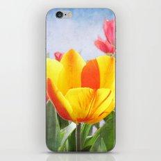 Tulip Joy iPhone & iPod Skin