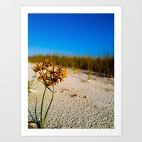 Beach Bouquet Art Print