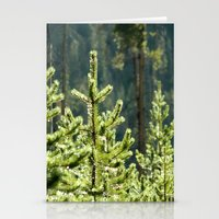 Young Lodgepole Pines Af… Stationery Cards