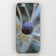 Olive iPhone & iPod Skin