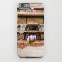 Fountain Flowers iPhone 6 Slim Case
