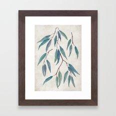 Eucalyptus leaves Framed Art Print