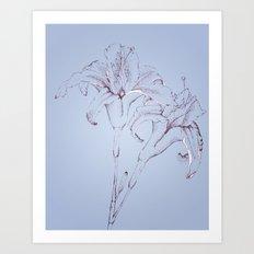 Lillys in Blue Art Print