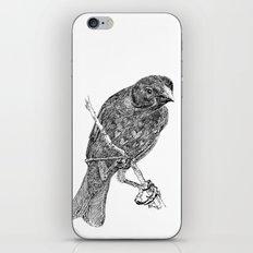 Lovely Bird iPhone & iPod Skin