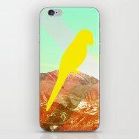 Quinn iPhone & iPod Skin