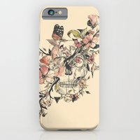 butterfly iPhone & iPod Cases featuring La Dolce Vita by Norman Duenas