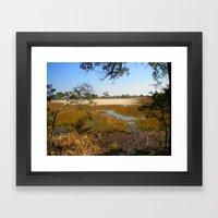Beautiful Swamp Framed Art Print