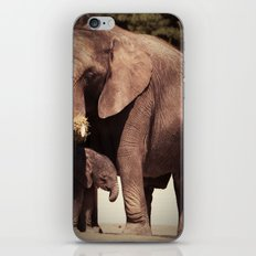 Elephants, mother and child iPhone & iPod Skin
