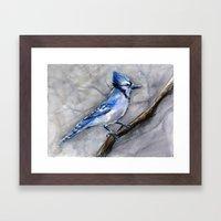 Blue Jay Watercolor | Bird Illustration Framed Art Print