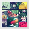 Nature pictures Canvas Print