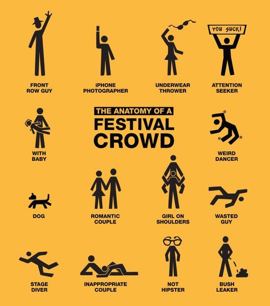 The Anatomy of a Festival Crowd Art Print