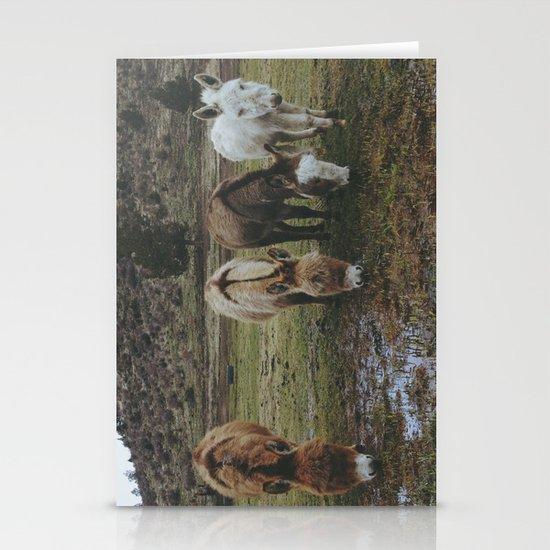 Miniature Donkeys Stationery Card