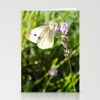 Opaque Butterfly Stationery Cards
