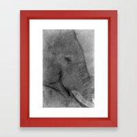 Asian Elephant Framed Art Print