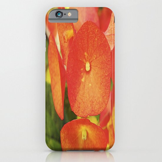 Red Flowers iPhone & iPod Case