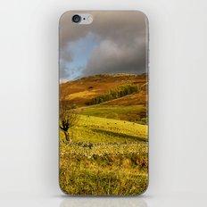 Gowbarrow Fell, Lake District iPhone & iPod Skin