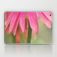 Flower Talk Laptop & iPad Skin
